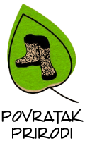 logo_30297