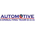 Automotive Consulting Team